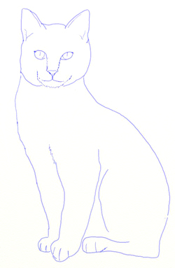 how to draw a realistic cat photawn